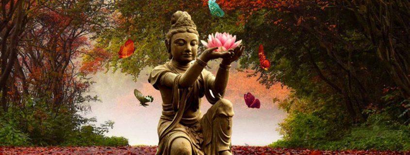 Budismo